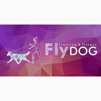 Дрессировка собак. Кинологический центр Fly dog