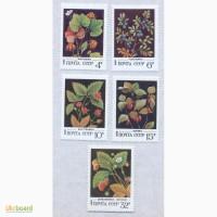 Почтовые марки СССР 1982. 5 марок Дикорастущие ягоды