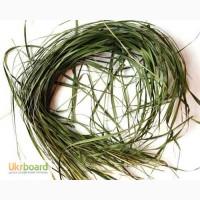 Зубровка трава 50 грамм