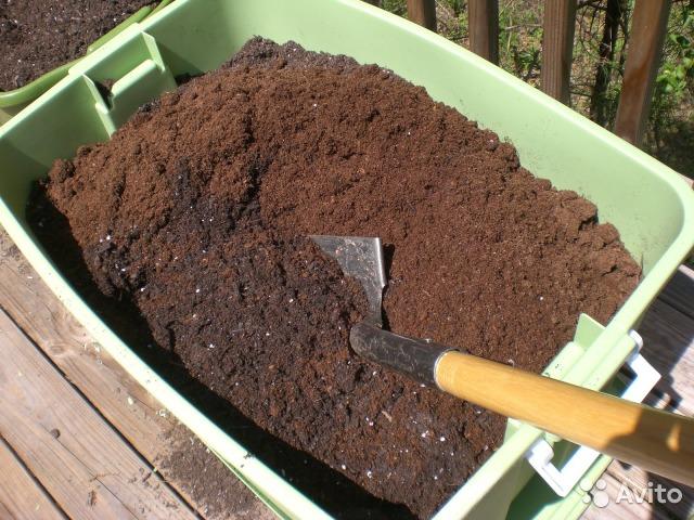 Фото 2. Почва для голубики Киев Грунт для посадки голубики продажа Киев. Торф кислый