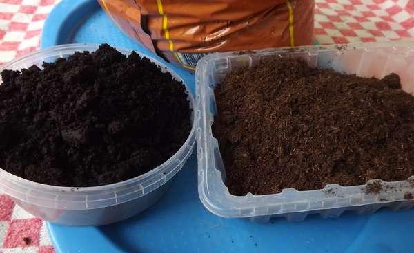 Фото 4. Почва для голубики Киев Грунт для посадки голубики продажа Киев. Торф кислый