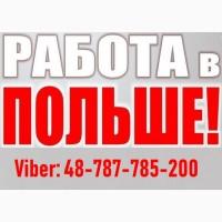 Бесплатное трудоустройство в Польше | Работа в Польше для Украинцев