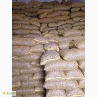 Принимаем заказы на орех грецкий 2018 года урожай