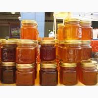 Куплю мёд по УКРАИНЕ, Разнотравье и Подсолнух