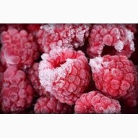 Камера заморозки фруктов