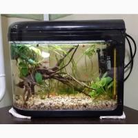 Новый нано аквариум 7л + оборудование