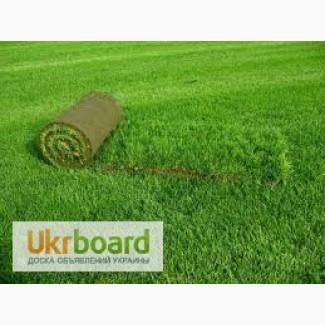Укладка газона в Киеве