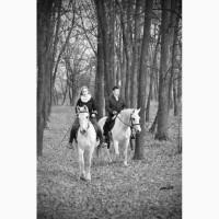 Оригинальный подарок к 8 марта - конная прогулка, фотосессия с лошадью