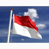 Регистрация фирмы в Польше и сопровождение/Фирма в Польше