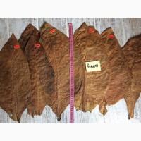 Насіння і лист тютюну (Семена табака) 18 сортів