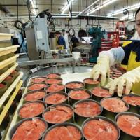 Нужны упаковщики на консервный завод в Польше