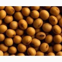Семена сои ВАЛЮТА под гербицид 1 репрод