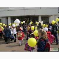 Оформление шарами школы, шары на 1 сентября, шарики на 1 звонок