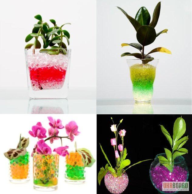 Декоративная почва для растений киев