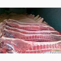 Продам Говядину оптом (корову, быка) - мясо говядины - Корова, Бык. Киев есть Halal