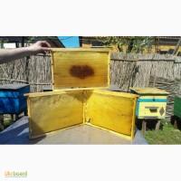 Продам суш пчелиную