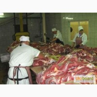 Робота в Польщі на мясокомбінат