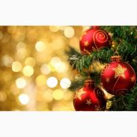 Тур в Карпаты на Рождество из Киева, тур Буковель Рождество автобус