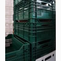 Ящик пластиковый перфорированный для овощей и фруктов