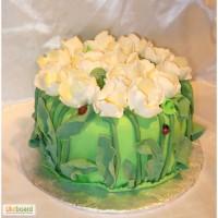 Домашний торт на заказ (капкейки)