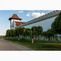 Винные туры по Молдове с дегустацией