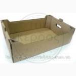 Евротара для яблоко на 18-20 кг 560х380х150мм