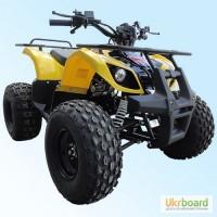 Квадроцикл Skybike Hyper 110