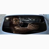 Наклейка на заднее стекло автомобиля 3D 130cm*70cm. Наклейки на авто
