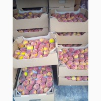 Продам персик с сада