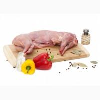 Продам мясо кролика Харьков. Всегда свежее, можно под заказ