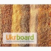 Крупа пшенична продам