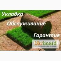 Рулонный газон отличного качества! Продажа и укладка