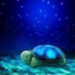 Детский ночник «Черепашка», проектор звездного неба