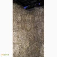 Солома ячневая и пшеничная в тюках