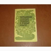 Выращивание саженцев плодовых и ягодных культур