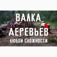 Удаление деревьев Киев. Спил Деревьев в Киеве. Дробление веток Киев