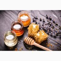 Куплю мед сортовой и разнотравье, без подсолнуха