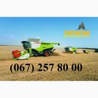 Уборка зерновых и масличных культур комбайнами Claas Lexion, John-Deere и др