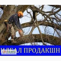 Обрезка веток, кронирование Одесса