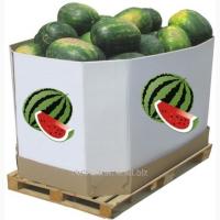 Арбузные ящик (октабин)