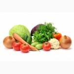 Куплю оптом овощи (лук, свекла, морковь, капуста)