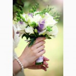 Прокат арки на свадьбу, прокат чехла на стул, прокат стоек на свадьбу в Киеве от 500 грн