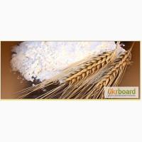 Мука пшеничная оптом по Украине