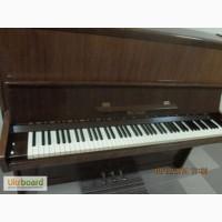 Перевозка пианино, перевозка роялей дешево в Киеве