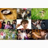 Детский лагерь Questy C Пуща Лесная