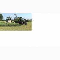 Уборка кукурузы на силос, сенаж, подбор валков. Чернигов