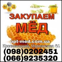 Мёд оптом (подсолнух)