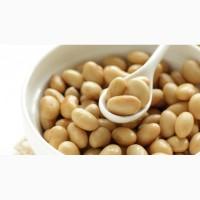 Закупаем Сою сырой протеин не меньше 33%
