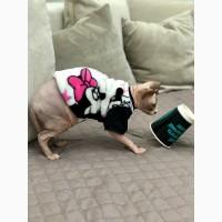 Продам кофту с рукавом для сфинксов, кошек, Кофта MIKKI2 (KRM/M2/83526) Style Pets