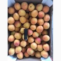 Продам абрикосов наличии есть объёма
